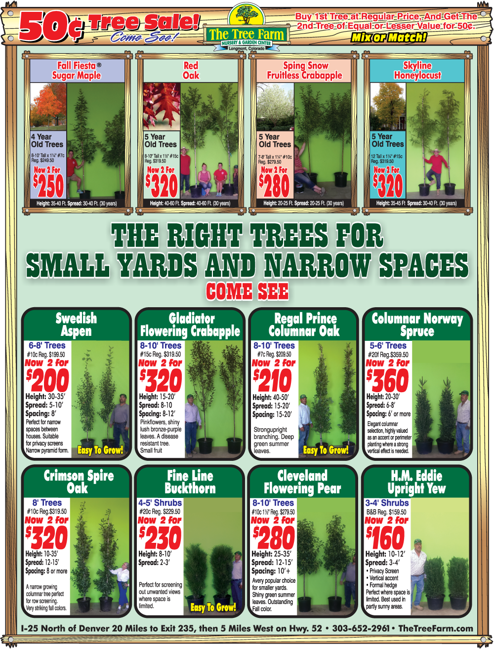 Serious Tree Sale...Going On Now